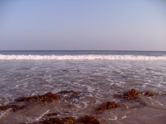 Malibú, CA: Pacific Ocean (Malibu Beach)