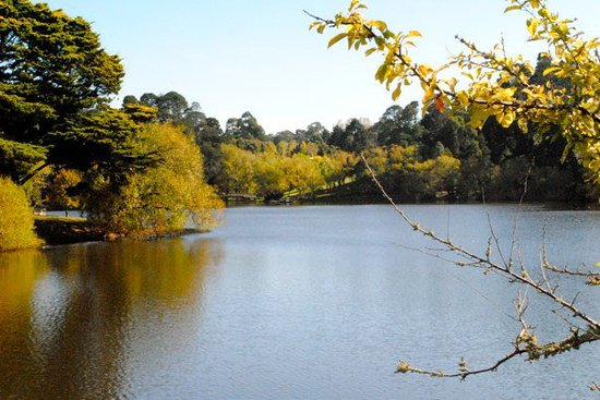 Things To Do in Lake Daylesford, Restaurants in Lake Daylesford