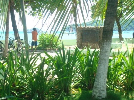 Плайяс-дель-Коко, Коста-Рика: (Coco Del Playa, Costa Rica)