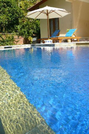 Yuli's Homestay : Swimming Pool