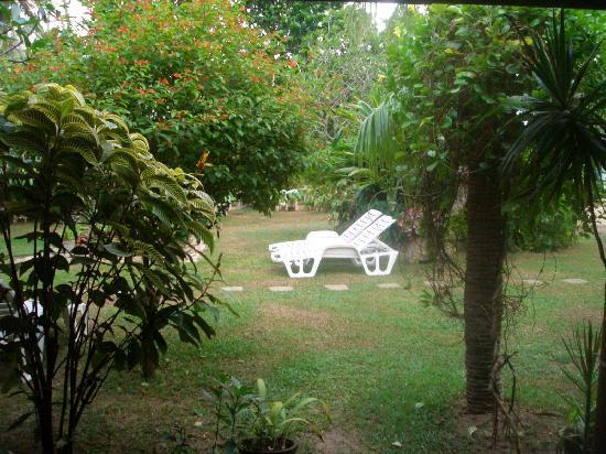 Hotel Susanthas: The beautiful hotel garden