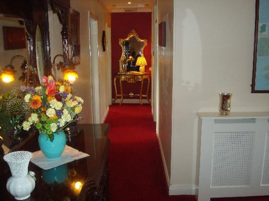 Athlumney Manor B&B: Hallway
