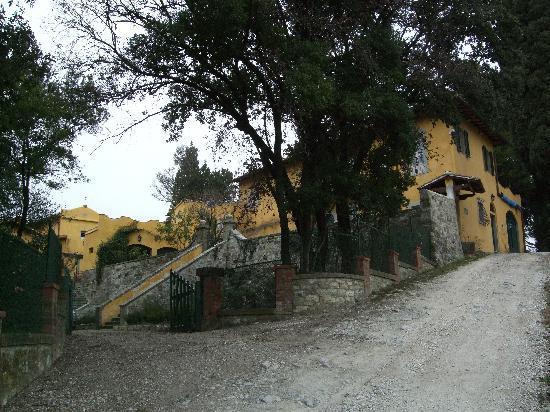 Villa Di Campolungo Agriturismo : The villa from the driveway