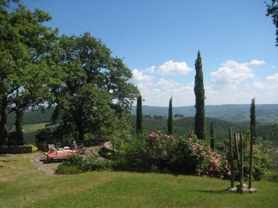 GRANDETERRA: More views from the garden