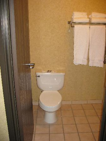 Holiday Inn Express Spokane Valley: The medium-sized bathroom just had the toilet and shower