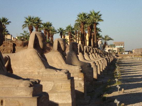 Mara House: Luxor Temple