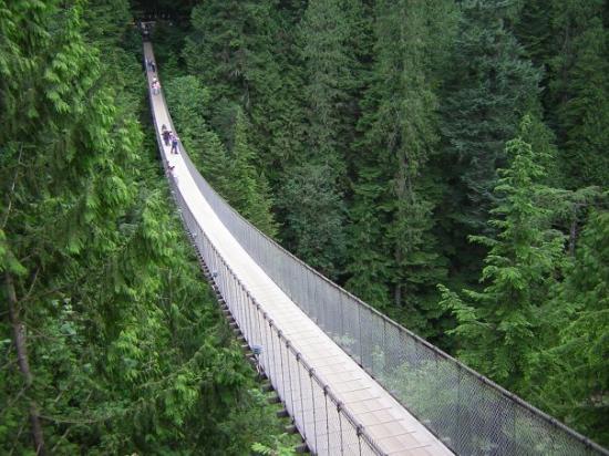 Capilano Suspension Bridge und Park: Pont suspendu pas loin du centre ville de Vancouver