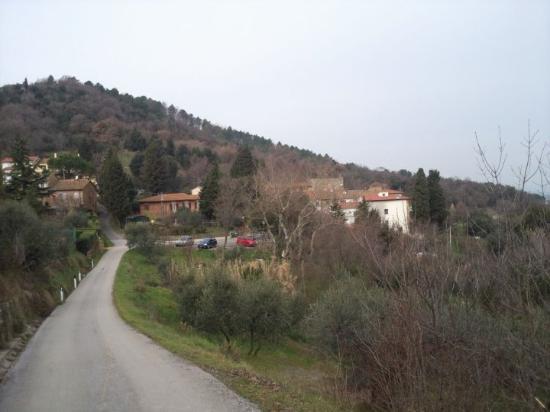 Livorno Picture