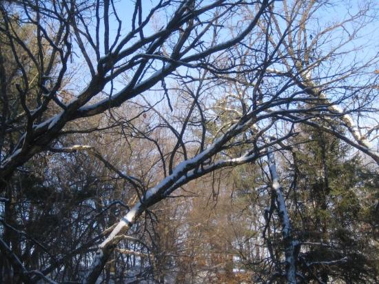Eau Claire (WI) United States  city photo : Eau Claire, WI, United States Carlon Park Picture of Eau Claire ...