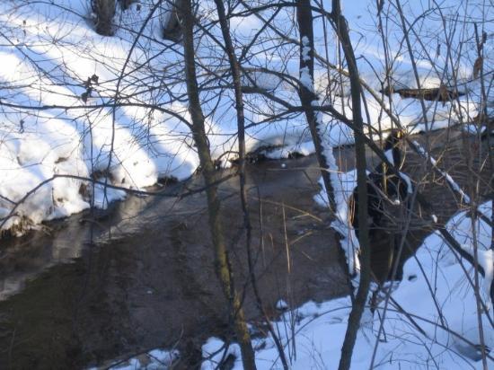 Eau Claire (WI) United States  city photo : Eau Claire, WI, United States Carlon Park ウィスコンシン州 ...