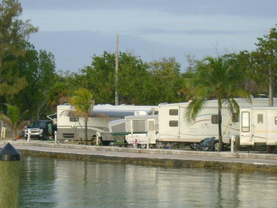Jolly Roger RV Resort: Camp Site
