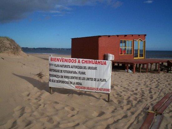 Zdjęcie Punta Ballena