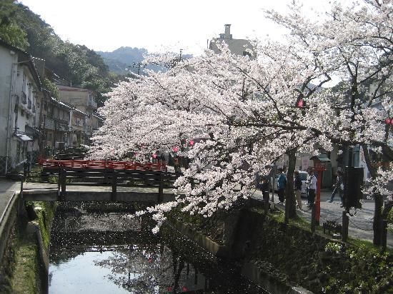 Kinosaki Onsen Kojinmari: stream runs through center of town