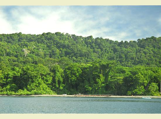 Playa Nicuesa Rainforest Lodge: The entry point to the Lodge is only accesible by boat.