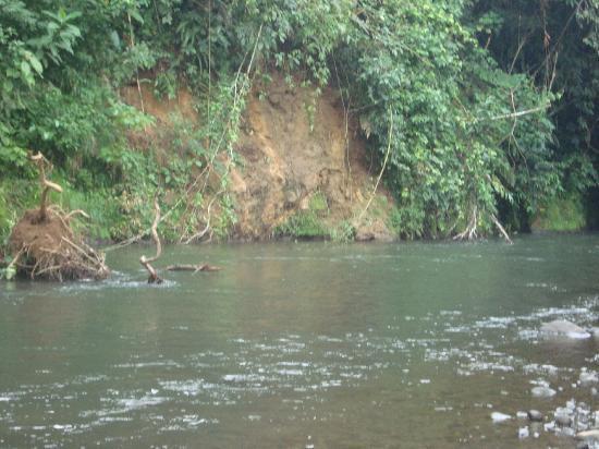 Mapi's Cabins: visita al rio 1