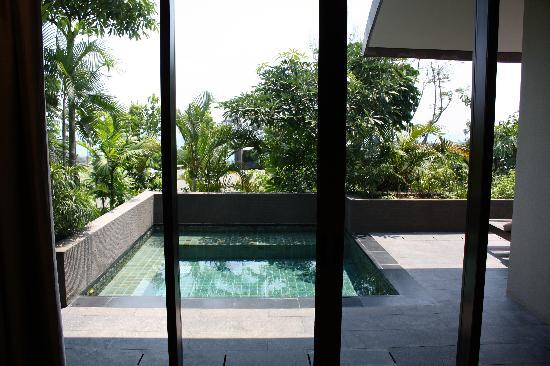 Capella Singapore: our own plunge pool