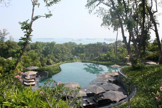 Capella Singapore: one of the pools