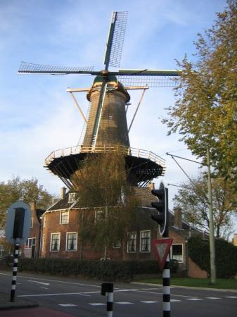 Delft لوحة