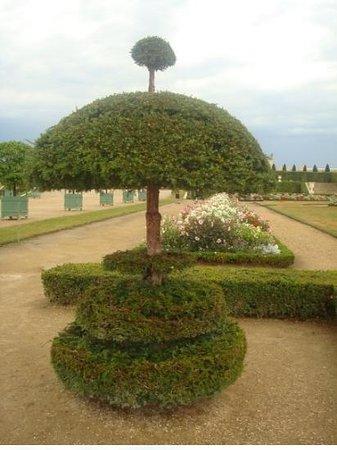 Foto de Versalles