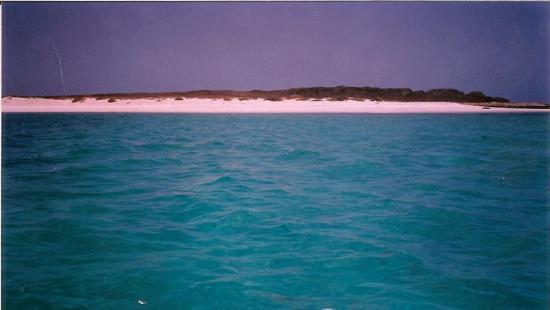 Boa Vista-billede