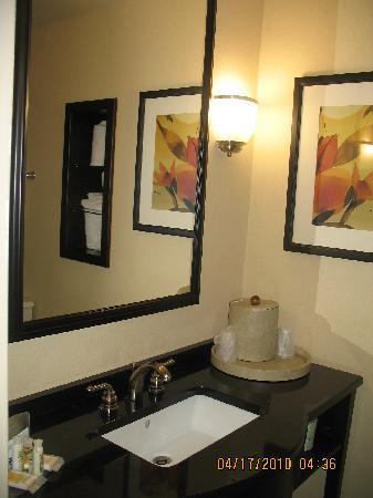 Holiday Inn Hotel & Suites - North: bathroom