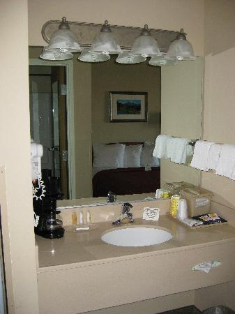 Quality Inn & Suites at Olympic National Park: The sink and hairdryer were located outside of the bathroom