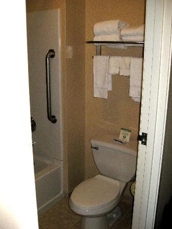 Quality Inn and Suites, Sequim: The medium-sized bathroom just had the toilet and shower