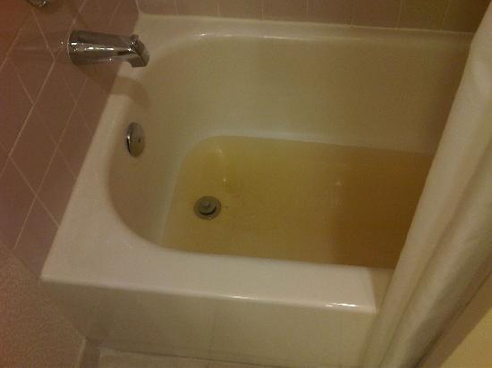 هيلتون سويتس بوكا راتون: Stinky sewage came up through our bath tub.