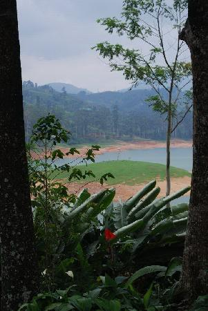 Ceylon Tea Trails: View from the bungalow