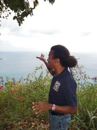Caribbean Historical Tours!: He points out interesting things that most tourguides don't.