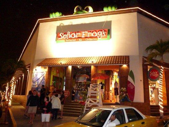 Señor Frog's Puerto Vallarta : Sr. frogs