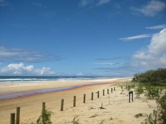 Seventy-Five Mile Beach : Fraser Island