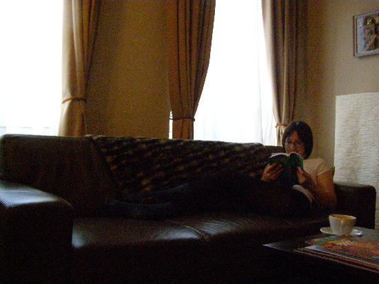 Britselei 37 : Living room