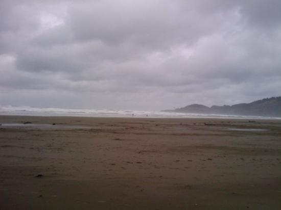 Newport Or Agate Beach