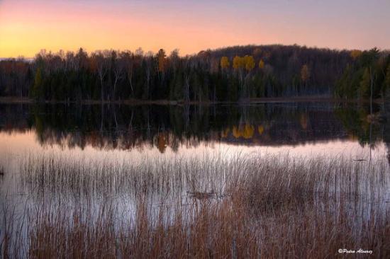Algonquin Provincial Park, Canadá: algonking-park1