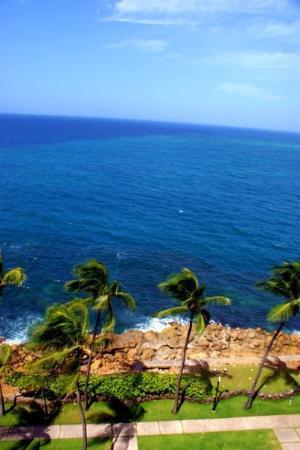 The Condado Plaza Hilton: The water is gorgeous!
