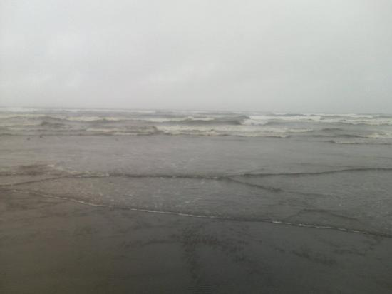 Ocean Shores, WA: Waves breaking. You can't tell but they were really big. 4/17/10