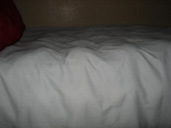 La Quinta Inn & Suites San Antonio Medical Center: The lumpy blankets