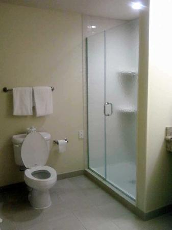 Courtyard Fort Myers at I-75 and Gulf Coast Town Center: Glass enclosed shower