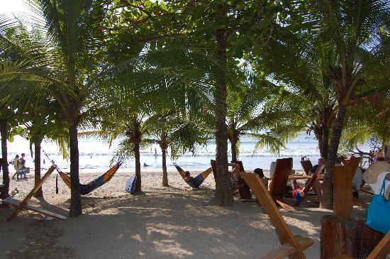 El Sabanero Eco Lodge: Lola's - soooo relaxing and great food on a great beach!