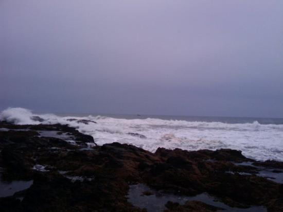Yachats, Oregón: The swells were so big the boat would go out of view.