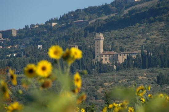 Cortona in background