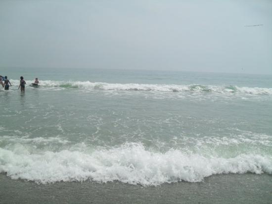 Myrtle Beach Photo