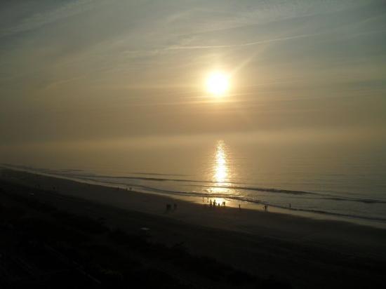 Myrtle Beach-bild