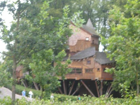 The treehouse. Alnwick