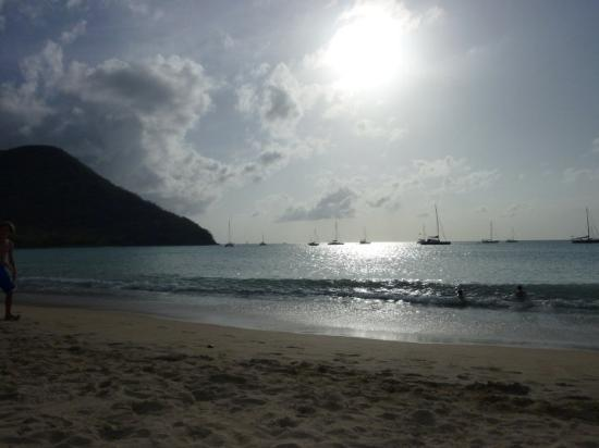 Rodney Bay Beach Picture Of St Lucia