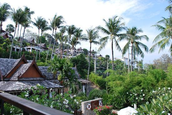 Ayara Hilltops Resort and Spa : Picturesque!