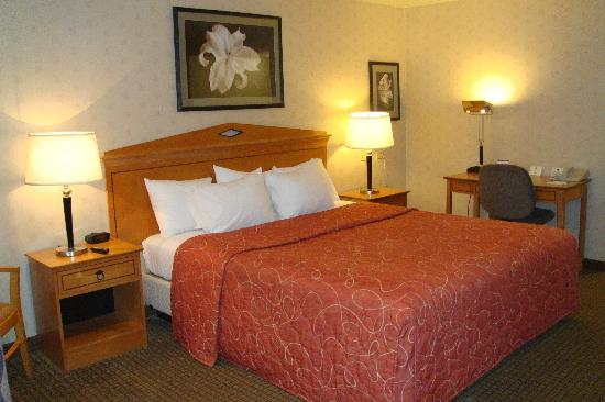 Best Western Inn: King bed