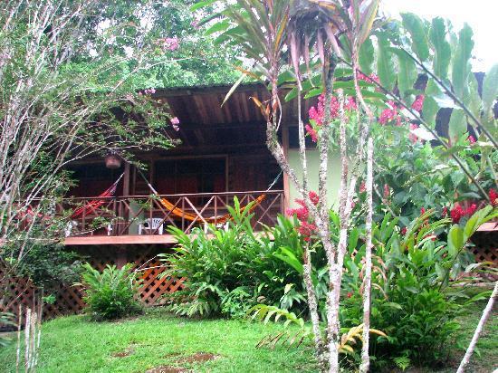 Nightlife at Yachana - Picture of Yachana Lodge, Napo Province ...