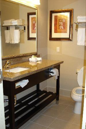 Country Inn & Suites By Carlson, Bradenton at I-75: Marble Vanity & Shower